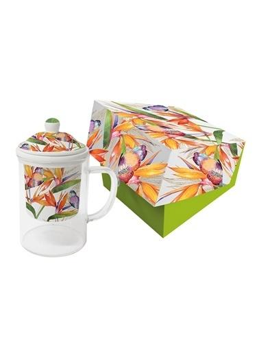 Dünya Style Parrot Flower Süzgeçli Cam Bardak Renkli
